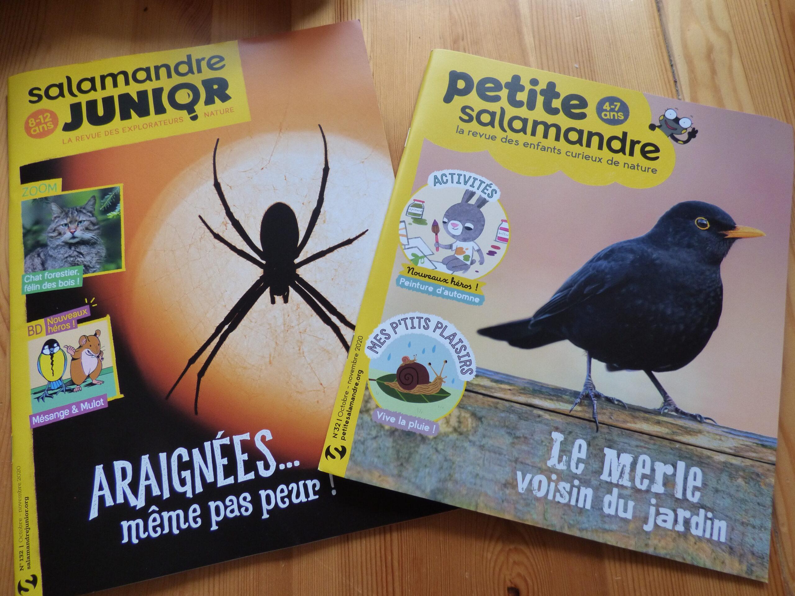 Magazines jeunesse de La Salamandre octobre-novembre 2020