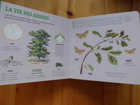 Le chêne et autres grands arbres, extrait