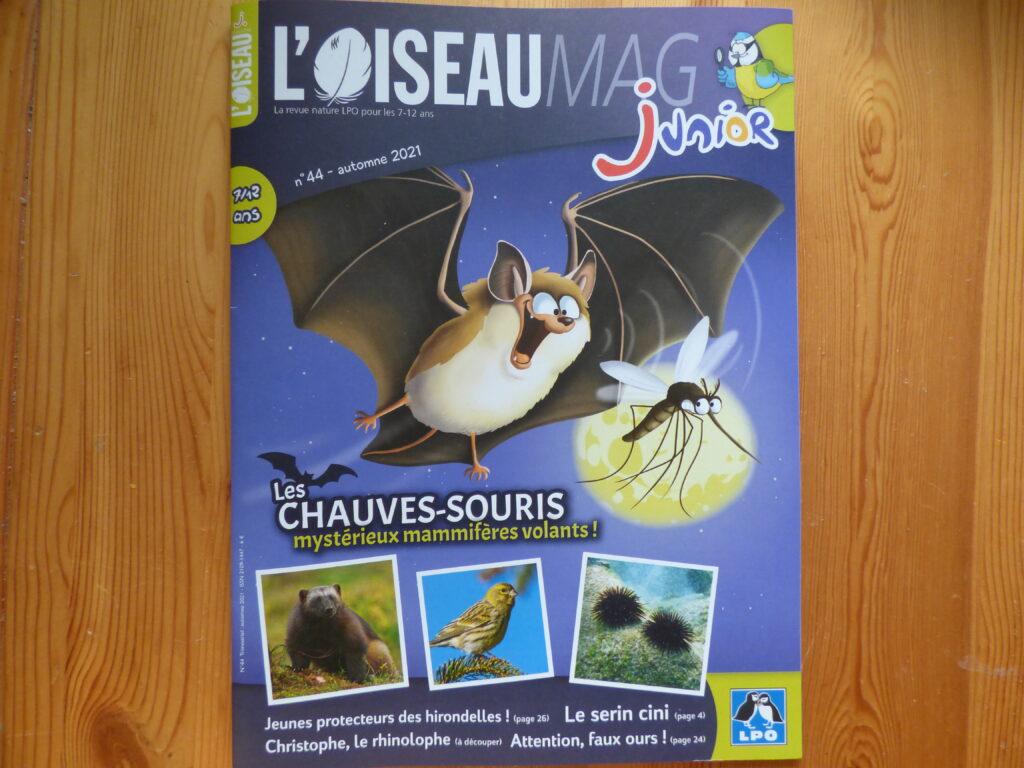 Oiseau Mag Junior, Automne 21, couverture