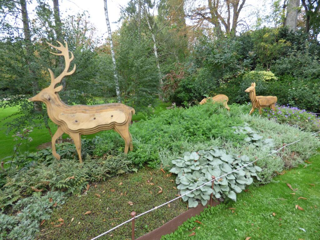 Exposition Grandeur Nature Luxembourg, cerfs