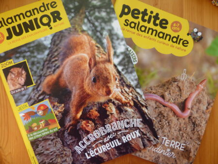 Petite Salamandre et Salamandre Junior octobre-novembre 2021, couvertures
